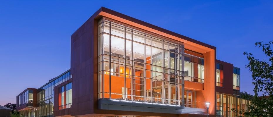 Adelphi Üniversitesi