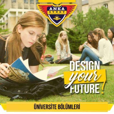İrlanda Üniversite Bölümleri