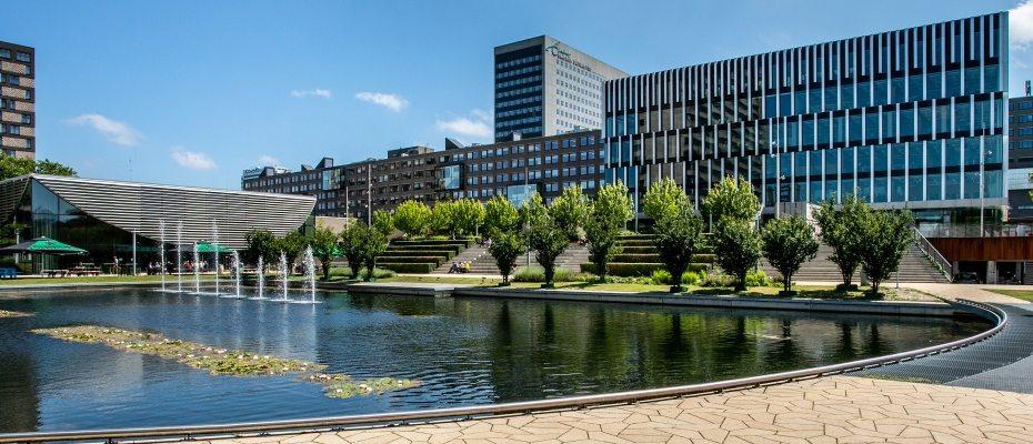 Hollanda'da öğrenci  hayatı ile ilgili tüm bilgiler
