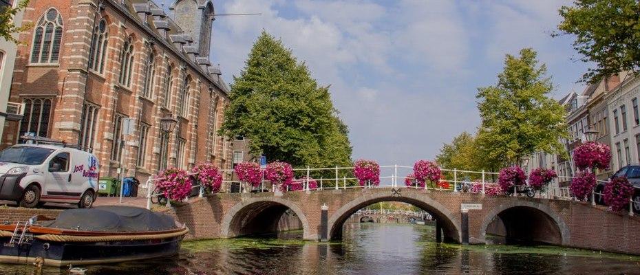 Leiden University hakkında tüm bilgiler