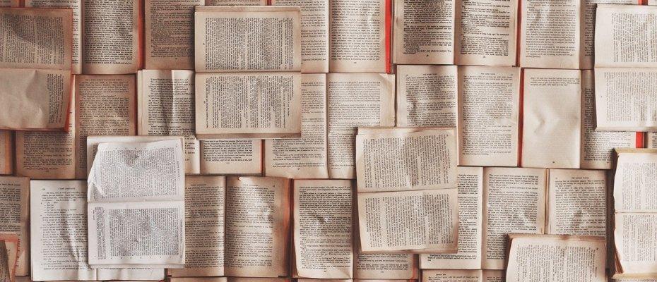 Yurtdışında eğitim alırken tercih edebileceğiniz bölümler listesi.